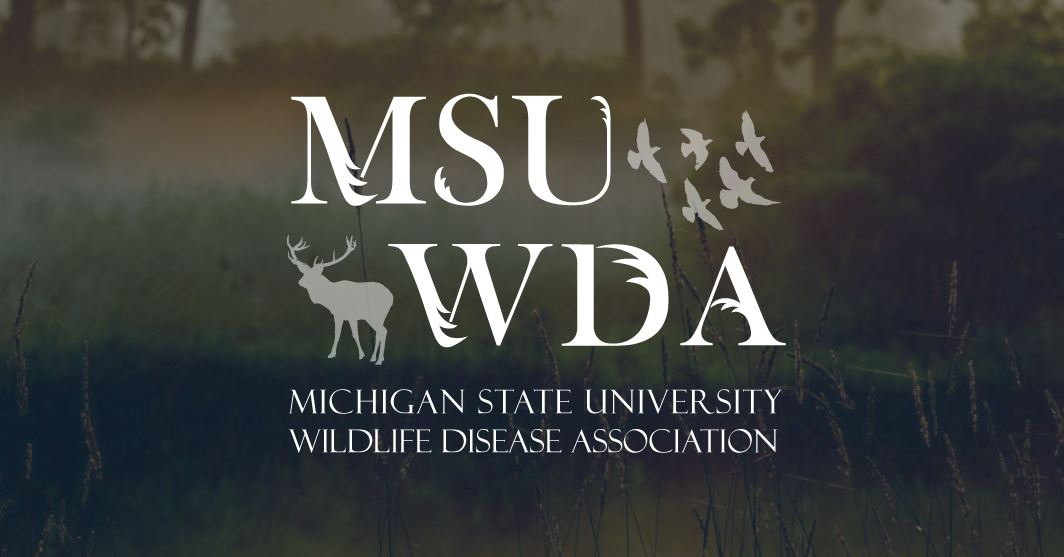 Wildlife Disease Association - Michigan State University Student Chapter